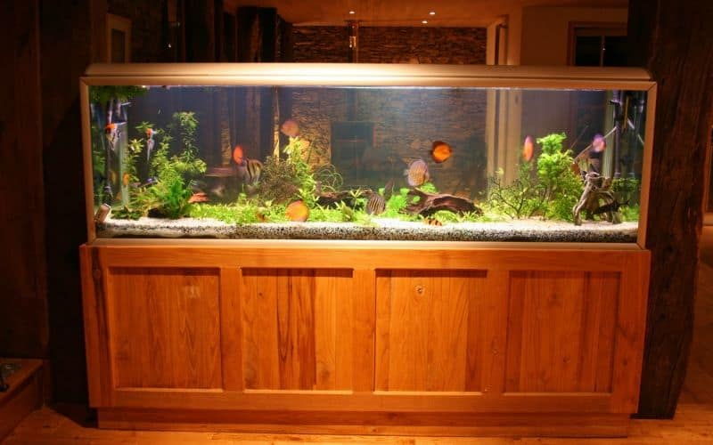 regulating aquarium lighting